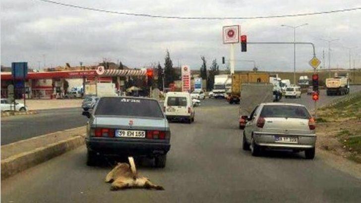 Çorlu'da otomobile bağladığı köpeği metrelerce sürükledi