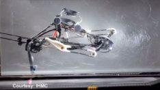 Elliptical Runner adlı bu robot koşarken kendi dengesini sağlıyor