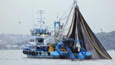 Balıkçı teknelerinde sigorta dönemi
