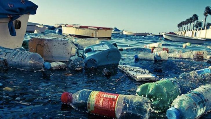 2050 yılına kadar okyanuslarda balıktan çok plastik çöp olacak