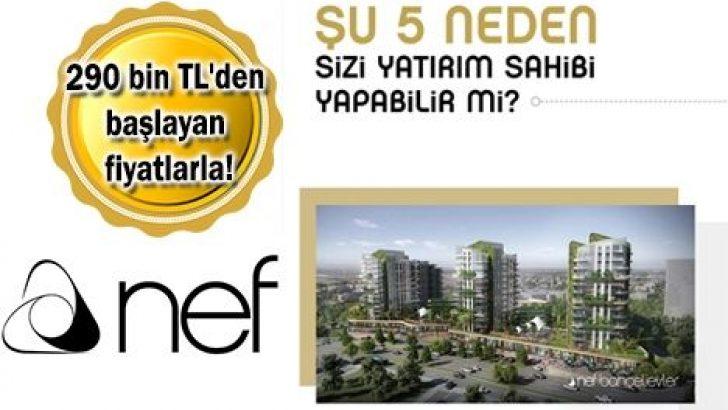 Nef'in 103 mağaza ve 43 ofisi bugün satışa çıkıyor!