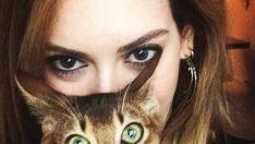 Sinem Kobal kedi kız oldu!