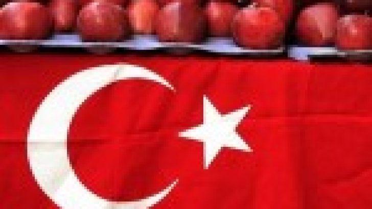 Ticaret Savaşları Türkiye için neden riskli?