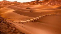 Suudi Arabistan'da 85 bin yıllık müthiş keşif