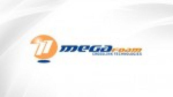 MEGAP, Hissesi Geçiçi Olarak Kapatıldı