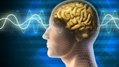 Beyninizi Güçlendirip Hafızanızı Geliştirmenin 8 Yolu!
