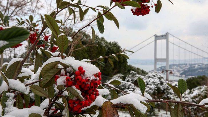 Marmara'ya Kar geliyor