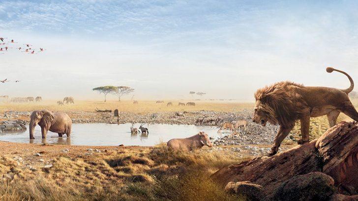 Nefes Kesici Bir Keşif Yolculuğu BBC Earth'te Sizi Bekliyor!