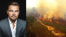 Leonardo Dicaprio'dan Amazon Yangınlarına Büyük Destek