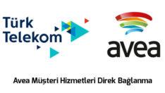 Türk Telekom Avea Müşteri Hizmetleri Direk Bağlanma