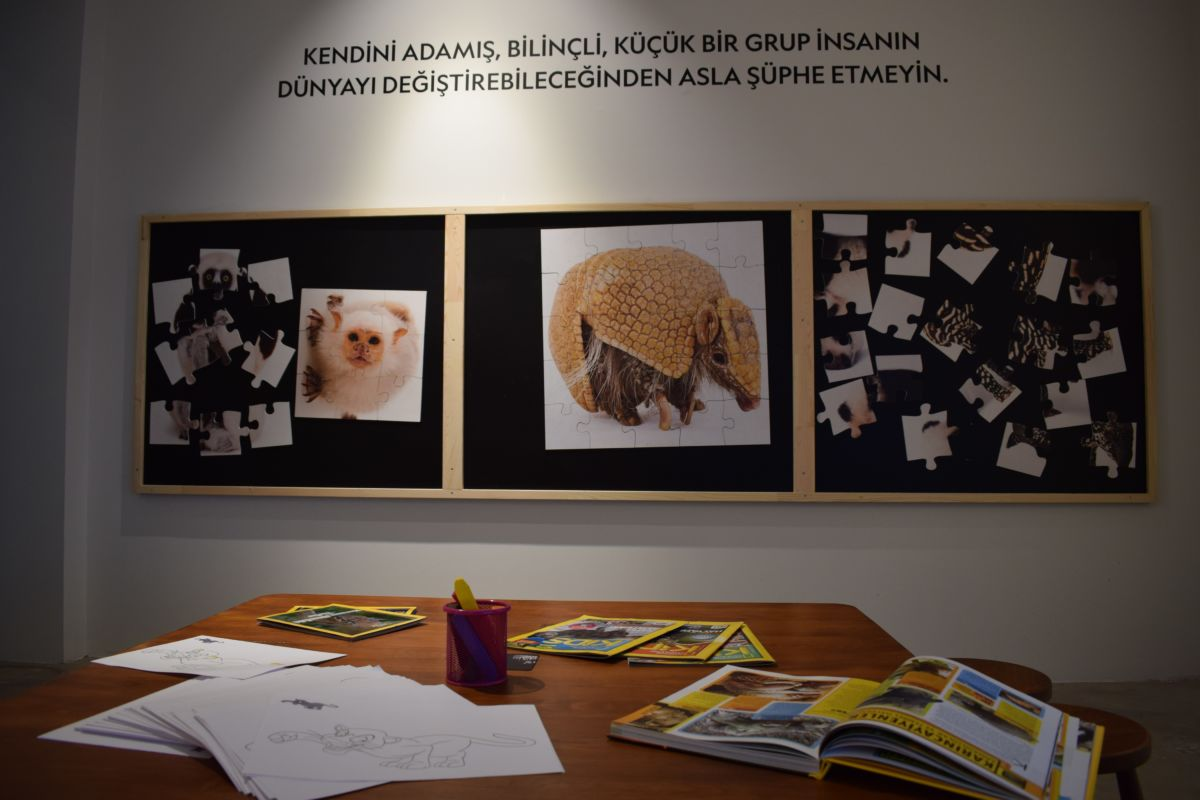 National Geographic Photo Ark Sergisi İstanbul'da!