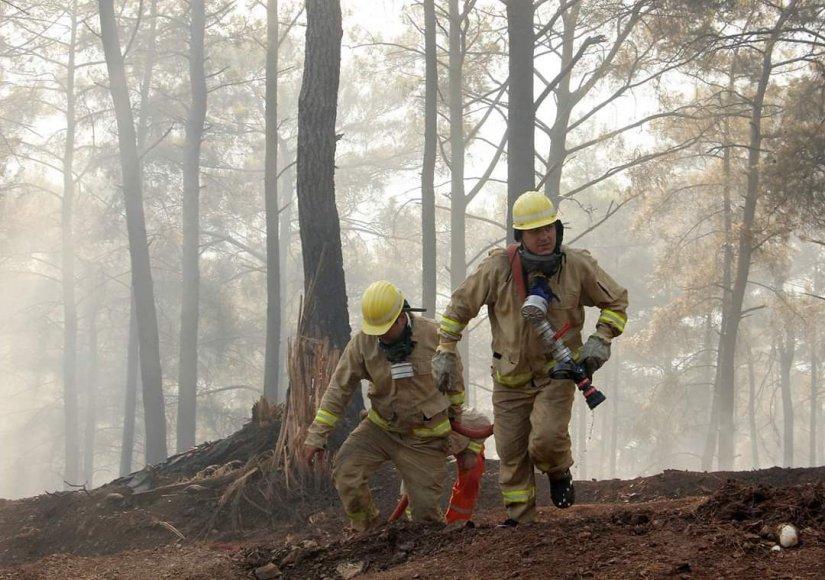 Orman Genel Müdürü Karacabey yangınlara ilişkin açıklamada bulundu